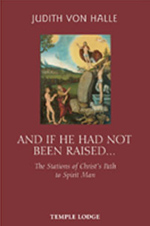 Book Cover for AND IF HE HAD NOT BEEN RAISED...