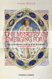 Book Cover for THE MYSTERY OF EMERGING FORM